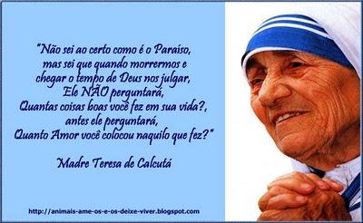 Madre Teresa De Calcutá Umas Das Maiores Mulheres De Todos Os